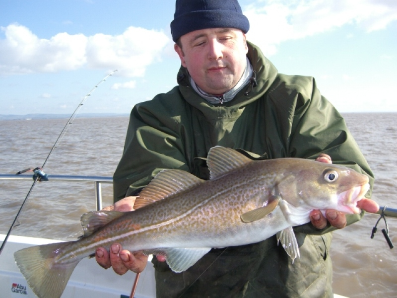Cod fishing photos in the bristol channel for Salted cod fish near me